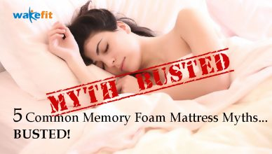 myths Memory Foam Mattress