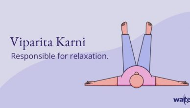 Viparita-Karni-Yoga-for-sleep