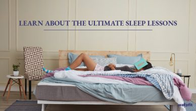 Learn About the Ultimate Sleep Lessons