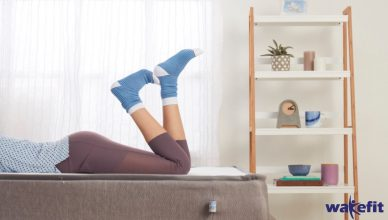 5 influencers to help you burn calories at home- The Lockdown Life